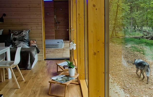 Lodge : La baie vitrée et un loup